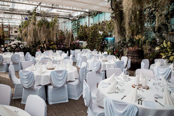 AuT__Hochzeitsfotos_0658-1-600x400 AuT__Hochzeitsfotos_0658