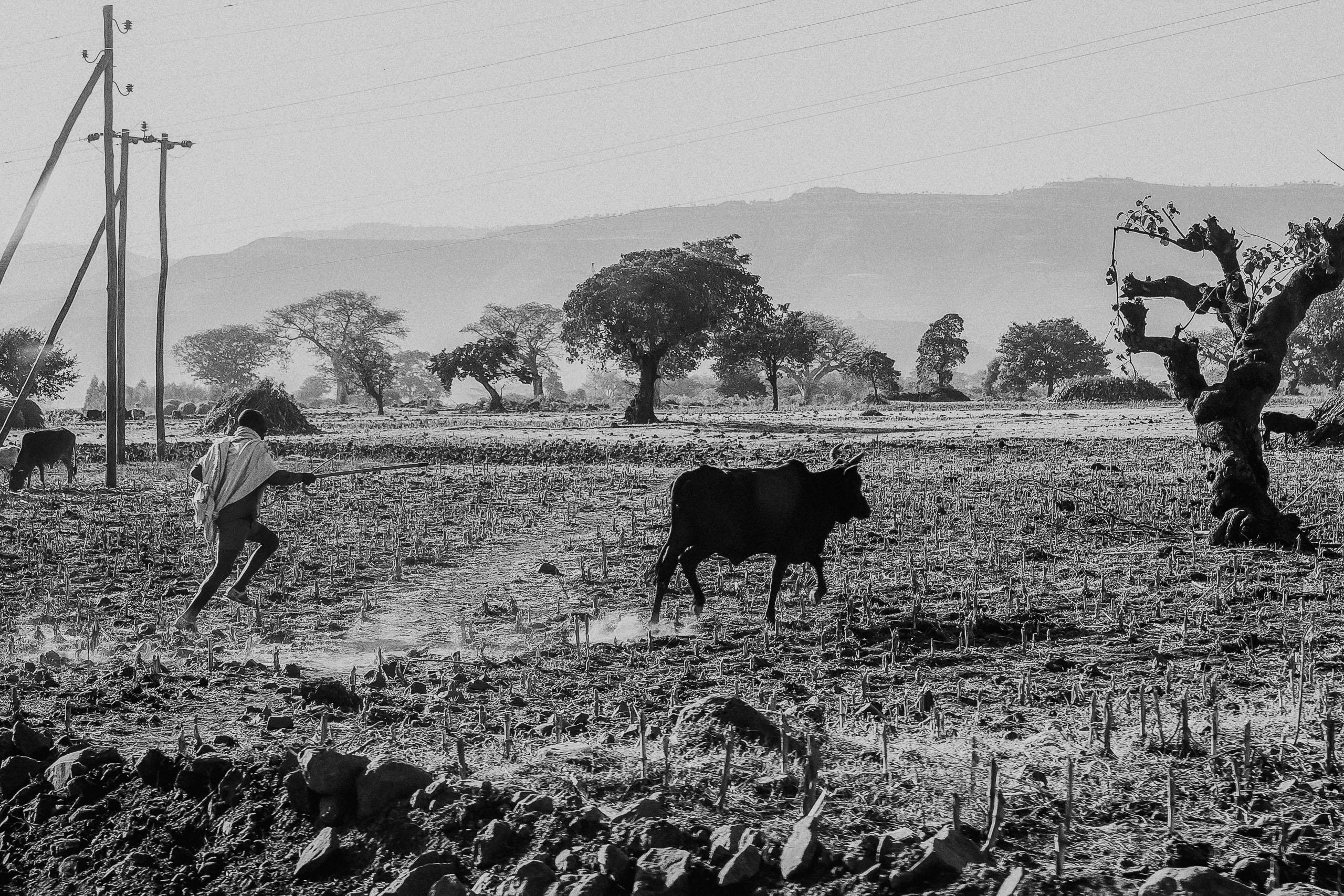 ethiopia-5 Äthiopien (2013 / 2014)