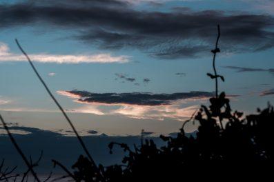 Fotograf-Korsika-129-397x264 C & N